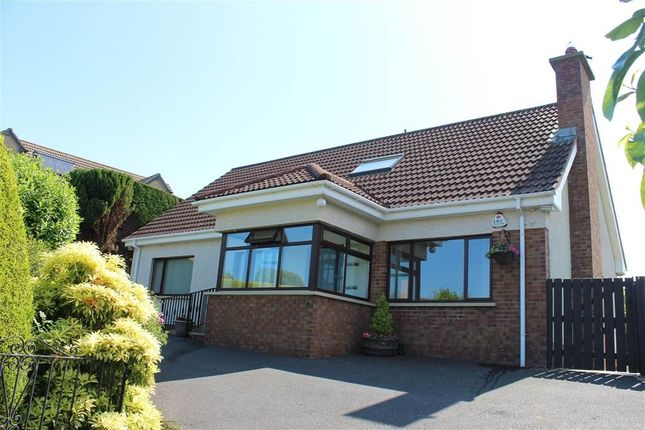 Thumbnail Bungalow for sale in Dallan Hill, Warrenpoint