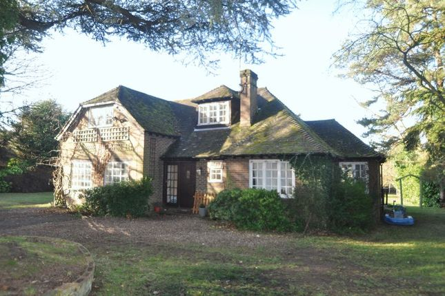 Thumbnail Cottage to rent in Blighton Lane, The Sands, Farnham