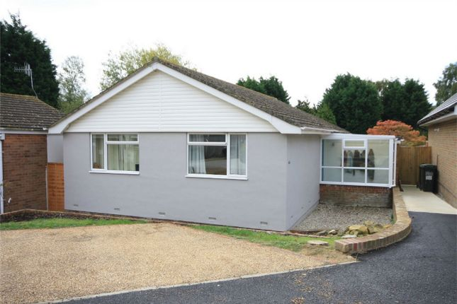 Thumbnail Detached bungalow for sale in Haslam Crescent, Bexhill-On-Sea