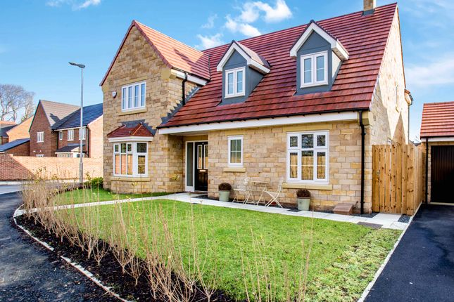 Thumbnail Detached house to rent in 20 Siskin Drive, Corbridge, Northumberland, 5Ab