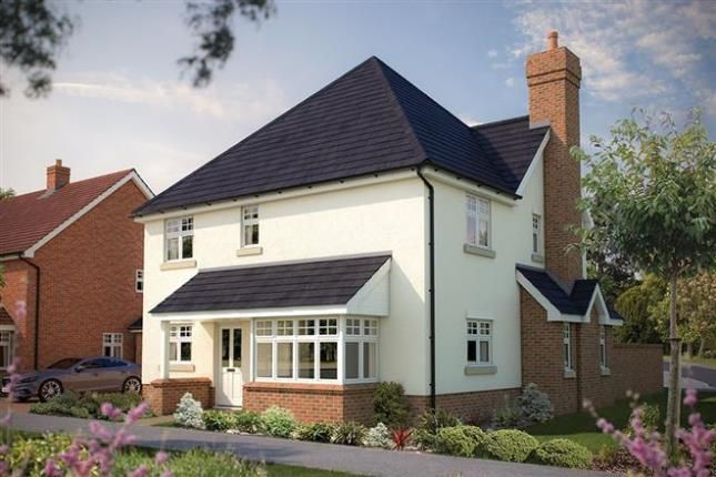 Thumbnail Detached house for sale in Burfield Grange, Park Road, Halisham, East Sussex