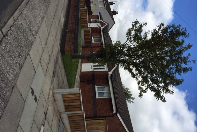 Thumbnail Terraced bungalow to rent in Stratton Road, Westvale, Kirkby