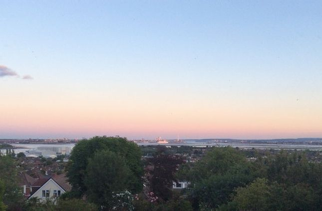 Vendor View Photo