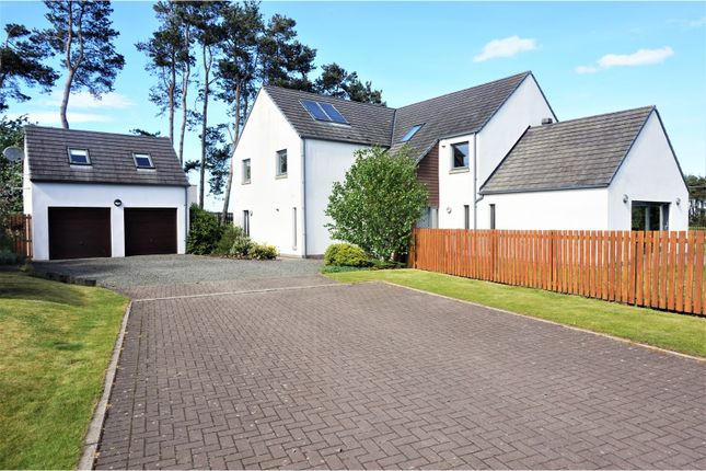 Thumbnail Detached house for sale in River View, Lanark