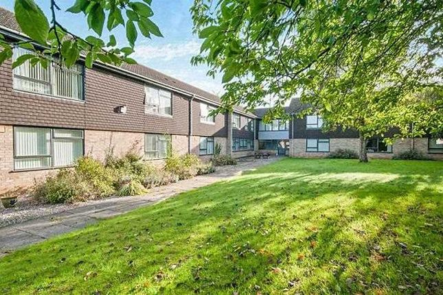 Thumbnail Flat for sale in Field Court, Stanton, Bury St. Edmunds