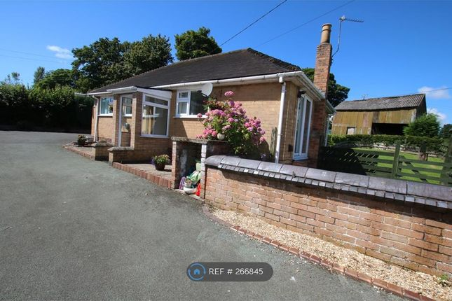 Thumbnail Bungalow to rent in Hall Lane, Wrexham