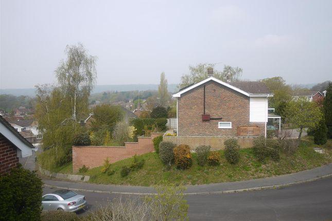 Views of Kimbers, Petersfield GU32