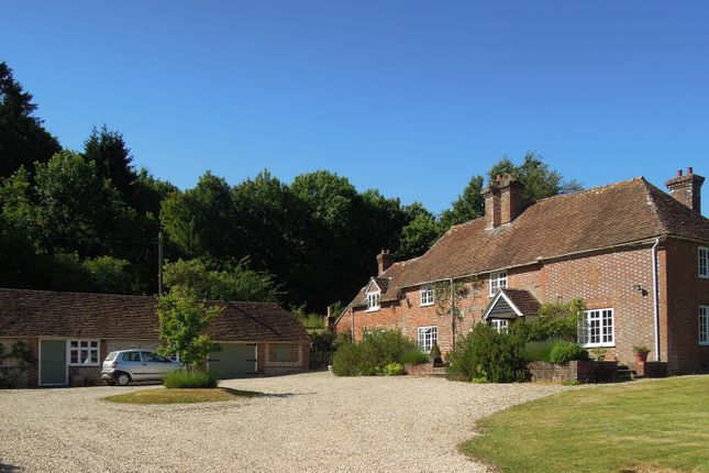 Thumbnail Detached house to rent in The Holt, Upham