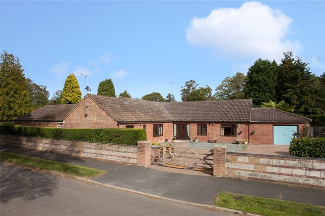 Thumbnail Bungalow for sale in Pineheath Road, High Kelling, Holt, Norfolk