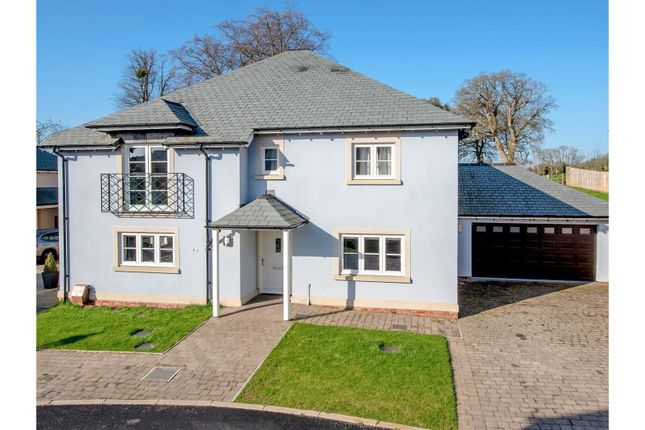 Thumbnail Detached house for sale in South Drive, Taunton
