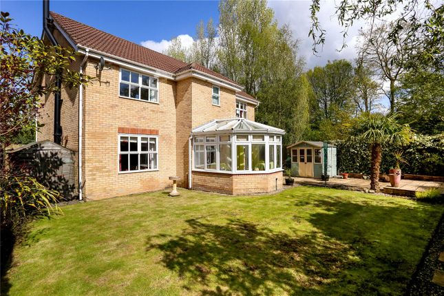 Thumbnail Detached house for sale in Huron Drive, Liphook, Hampshire