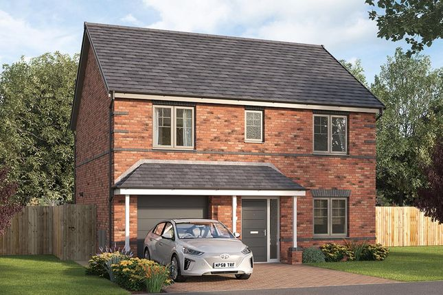 """Thumbnail Detached house for sale in """"The Abbotsbury"""" at Tom Blower Close, Wollaton, Nottingham"""