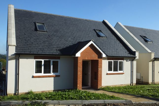 Thumbnail Detached house to rent in Squires Close, Halland