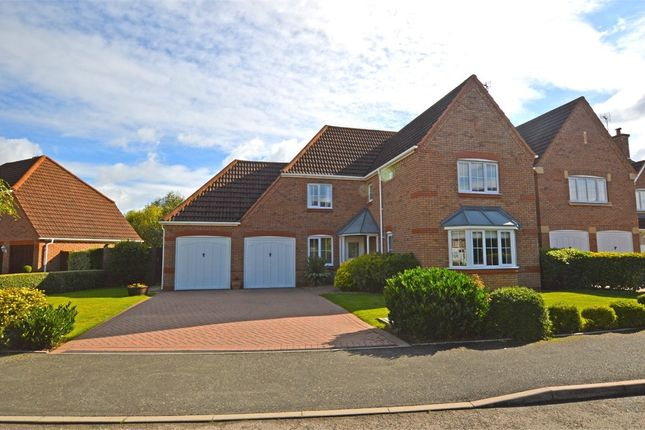 Thumbnail Detached house to rent in Gold Avenue, Cawston, Rugby, Warwickshire