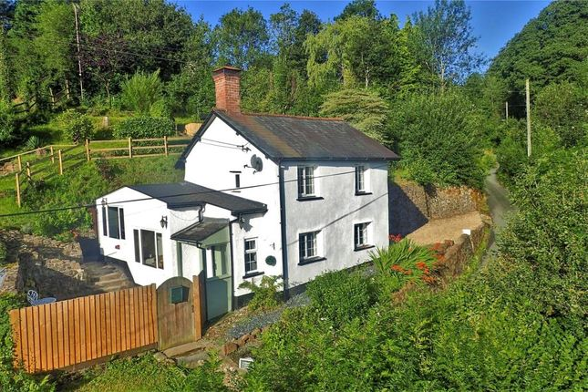 Thumbnail Detached house for sale in Hollocombe, Chulmleigh, Devon