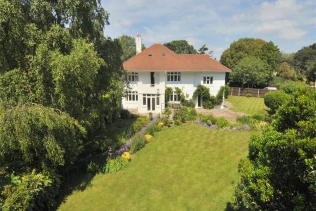 Thumbnail Property to rent in Glenferness Avenue, Talbot Woods, Bournemouth