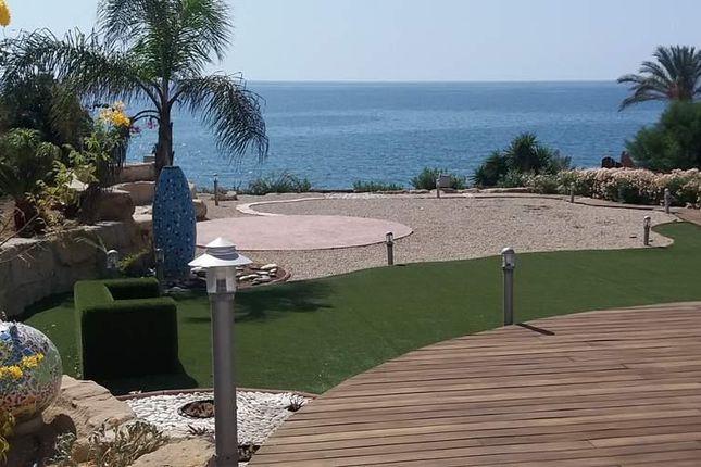 Zygi, Limassol, Cyprus