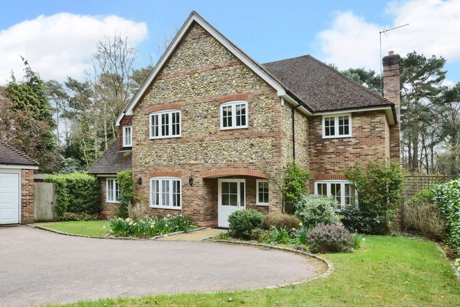 Thumbnail Detached house to rent in Tekels Park, Camberley