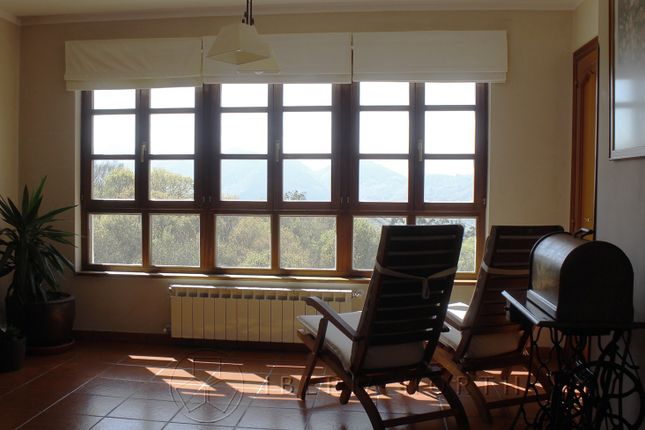 Living Area of Sinariega, Parres, Asturias, Spain