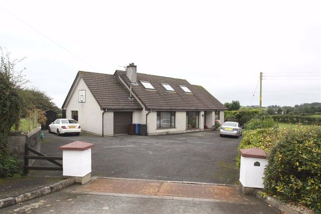 Thumbnail Detached bungalow for sale in Mountview Road, Ballynahinch, Down