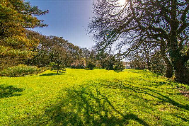 Picture No. 30 of Long Oaks Cottage, Penmaen, Swansea, Abertawe SA3
