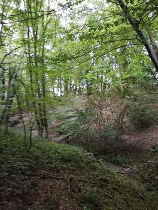 Land for sale in Woodfield Rd, Horsham, West Sussex