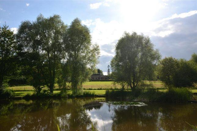 Thumbnail Detached bungalow for sale in Walden Estate, West Grimstead, Salisbury, Wiltshire