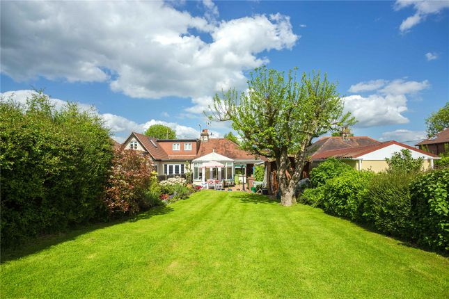 Thumbnail Semi-detached bungalow for sale in Rye Walk, Ingatestone, Essex