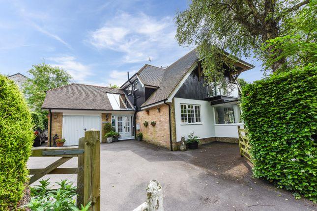 Thumbnail Detached house to rent in Fountain Road, Selborne, Alton
