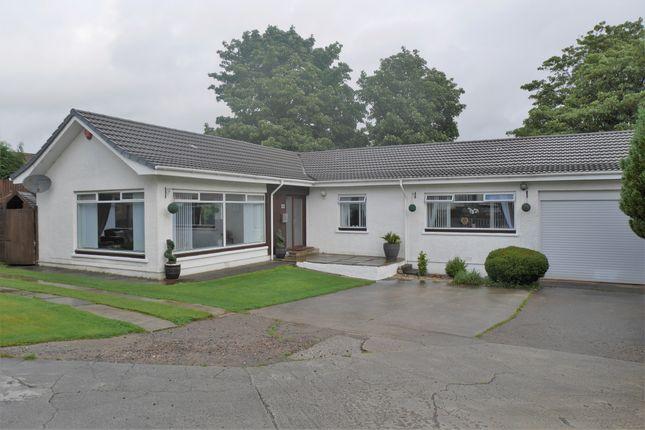 Thumbnail Detached bungalow for sale in Aurs Road, Barrhead