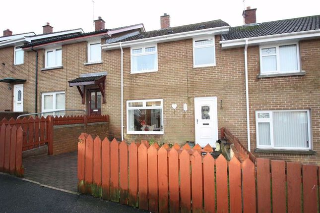 Thumbnail Terraced house to rent in Willow Crescent, Ballynahinch, Down