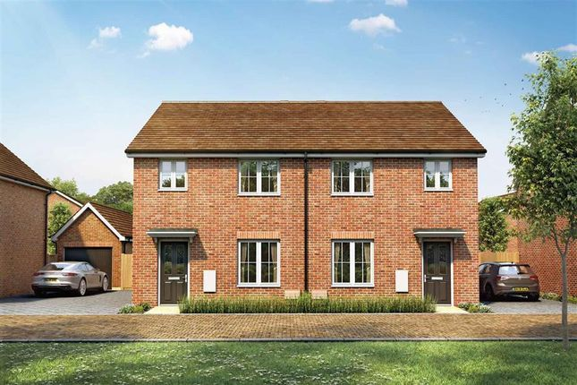 Thumbnail Semi-detached house for sale in Fontwell Avenue, Eastergate, Chichester