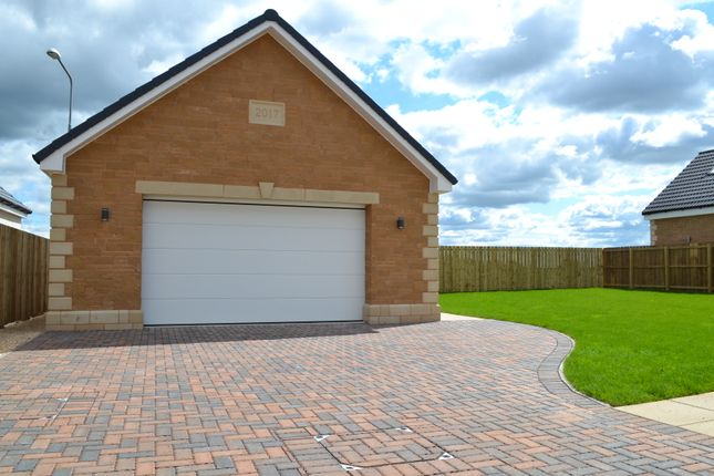 New Build Homes Motherwell