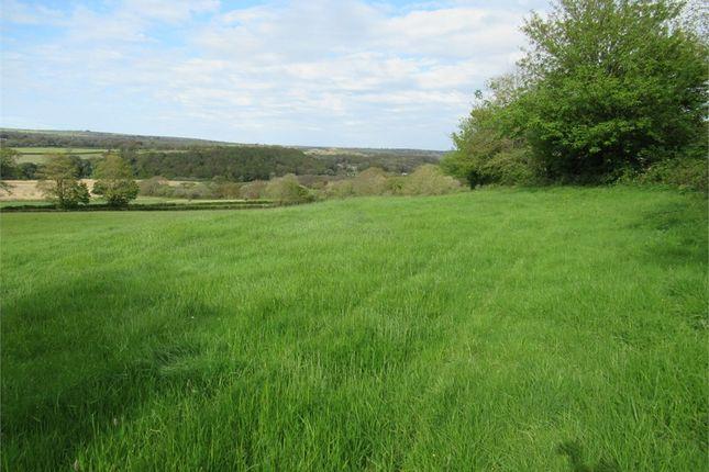 Land for sale in 18 71 Acres Agricultural Land, Bentinck