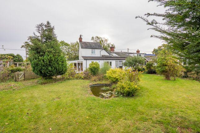 Cottage for sale in Alpheton, Sudbury, Suffolk