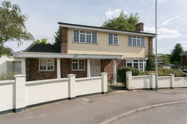 Thumbnail Detached house for sale in Faversham Avenue, Chingford, London