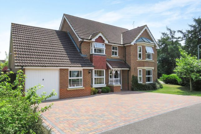 Thumbnail Detached house for sale in Cambium Close, Kettering