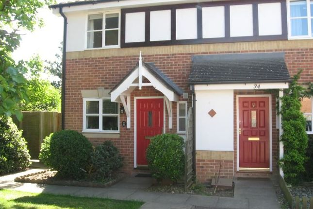 Thumbnail Terraced house to rent in Grenville Gardens, Chichester