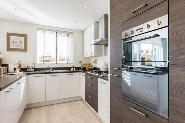 """Thumbnail Semi-detached house for sale in """"Holly"""" at Burcote Road, Towcester"""