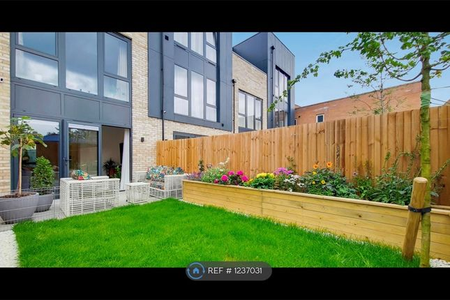 Thumbnail Terraced house to rent in South End, South Croydon