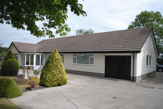 Thumbnail Detached bungalow to rent in Rossett Road, Holt, Wrexham