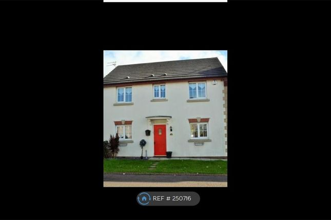 Thumbnail Detached house to rent in Bridle Way, Liverpool