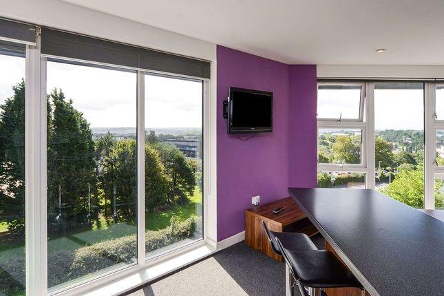 Thumbnail Flat to rent in Plymbridge Lane, Plymouth