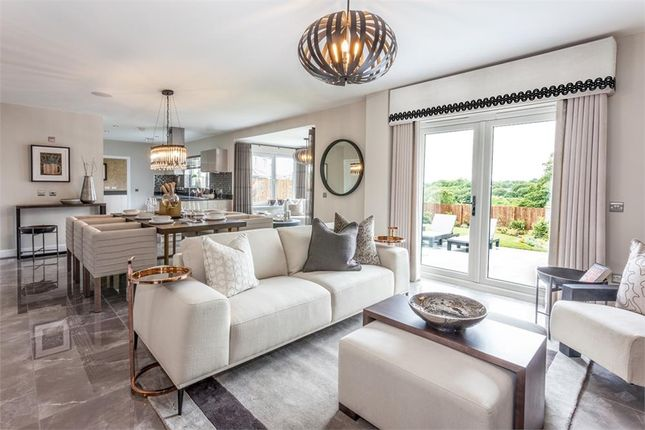"""Detached house for sale in """"Abercromby"""" at Blantyre Mill Road, Bothwell, Glasgow"""
