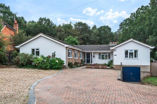 Thumbnail Bungalow for sale in Fullers Road, Rowledge, Farnham, Surrey