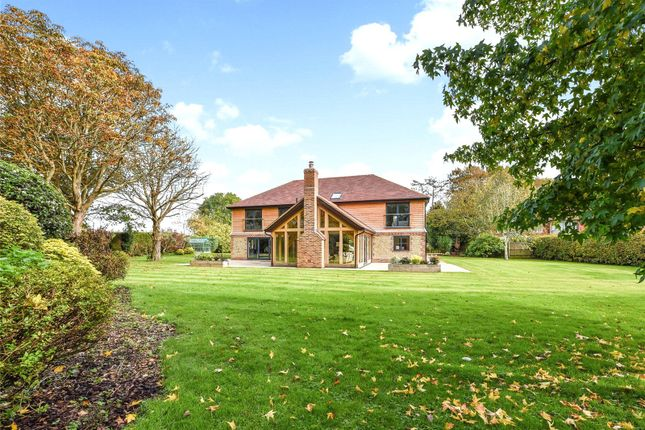 Thumbnail Detached house to rent in Lavant, Chichester, West Sussex
