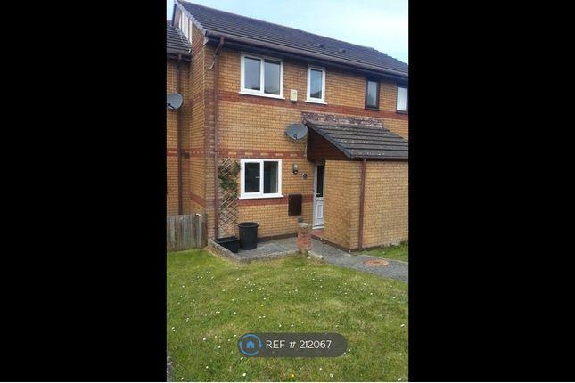 Thumbnail Terraced house to rent in Higher Bridge View, Wadebridge
