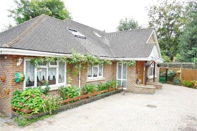 Thumbnail Detached bungalow for sale in Meadow Way, Addlestone, Surrey