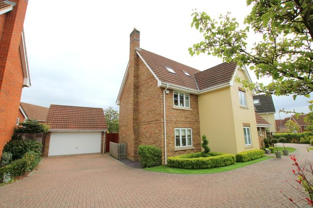 Thumbnail Detached house for sale in Willow Road, Dunmow