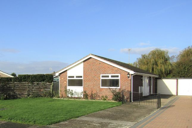 Thumbnail Detached bungalow to rent in The Meers, Kirby Cross, Frinton-On-Sea